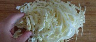 【偏食】キャベツダイエットの為に買ったのに、偏食息子がモリモリキャベツを食べた理由